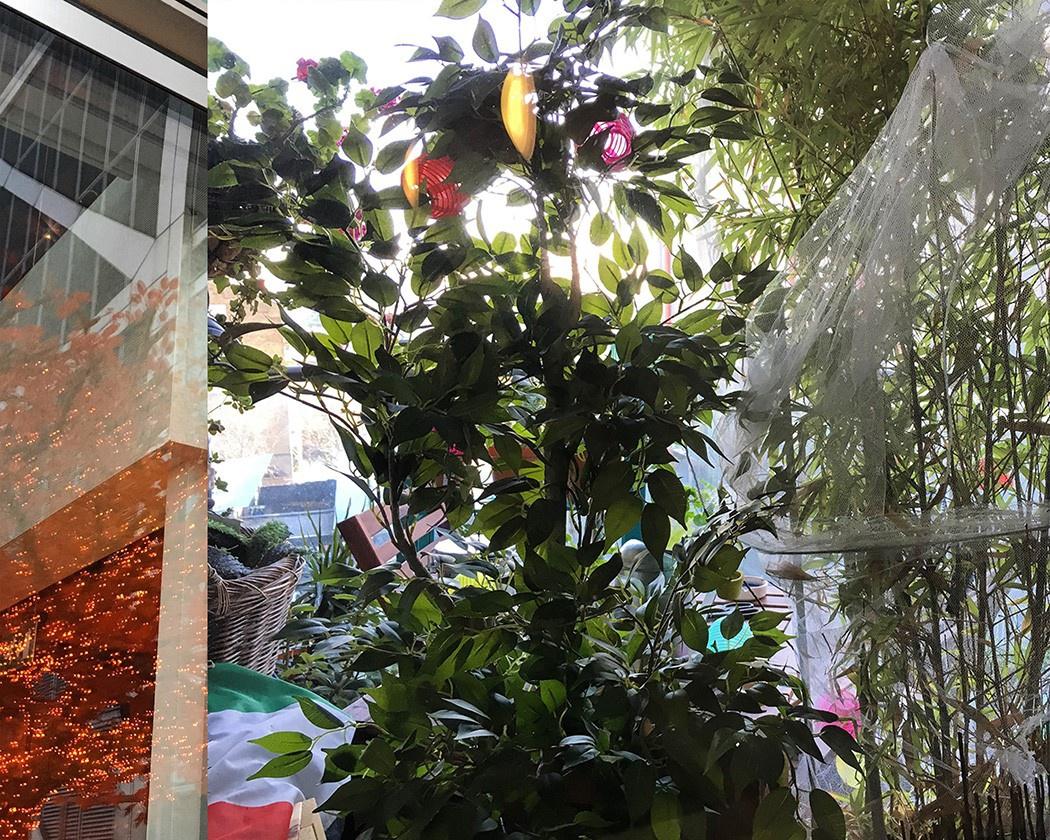 Jungle fun in London