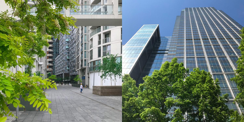 Green trees surrounding London city skyscraper buildings