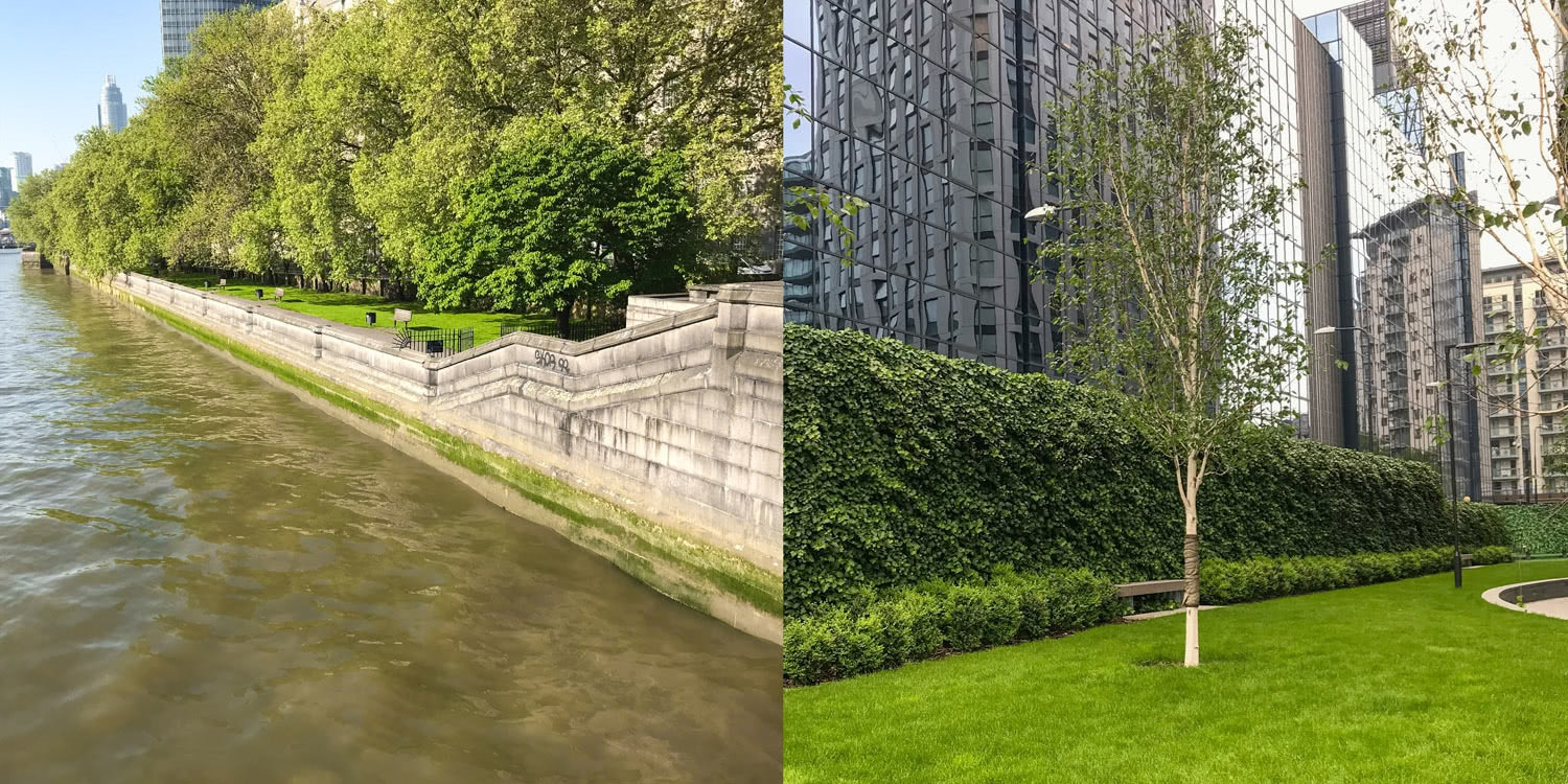 A river scene and more green spaces outside London architecture